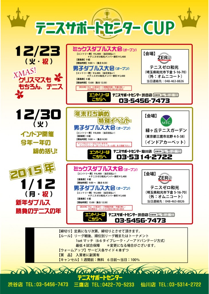 tenisapocup_2014123011